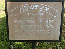 Cimg6349
